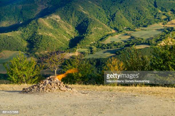 A flame from the volcano comes out from the subsoil and burns on top of a hill on August 14 2017 in Forli Italy The volcano of Monte Busca is the...
