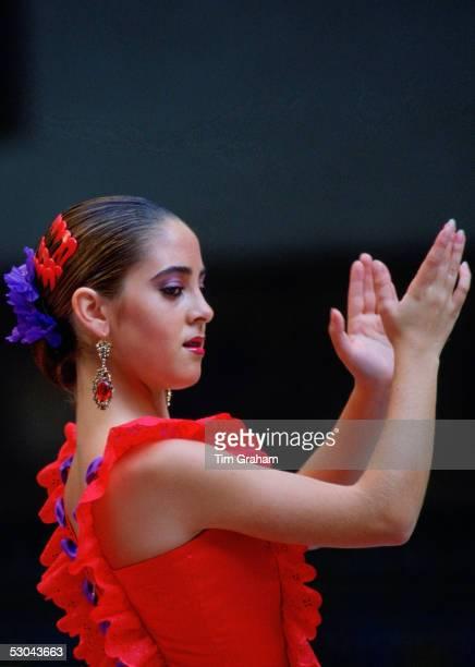 Flamenco dancer Alcazar Palace Seville Spain