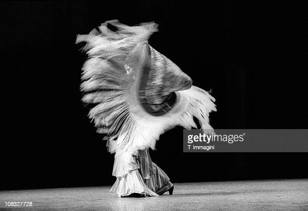 flamenco dancer with shawl - flamenco stock photos and pictures