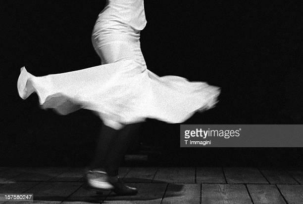 Flamenco-Blume