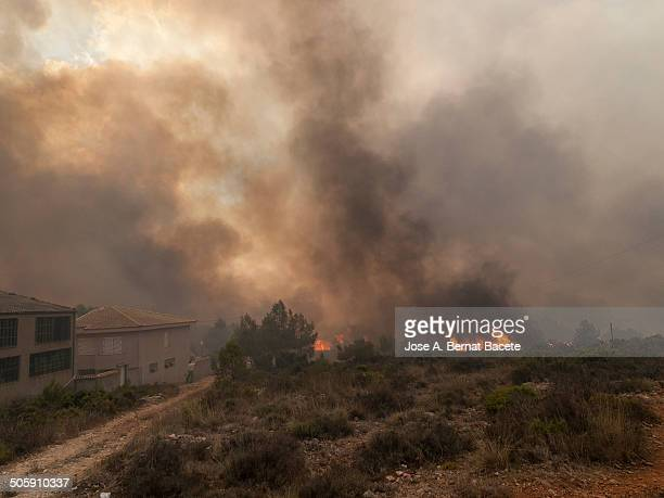 Flames and smoke from a wild forest fire next to the first houses of a village. Bocairent , Spain