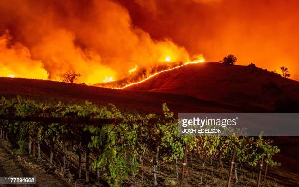TOPSHOT Flames approach rolling hills of grape vines during the Kincade fire near Geyserville California on October 24 2019 The fire broke out in...
