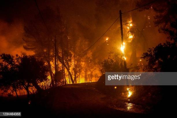 Flames engulf the forest near ancient Olympia in western Greece on August 4, 2021. - Greek firefighters have been battling several heatwave-fuelled...