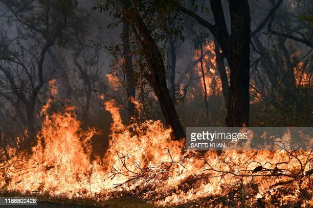 Flames from back burning measures used to secure residential areas from encroaching bushfires are seen at the Mangrove area in Central Coast some...