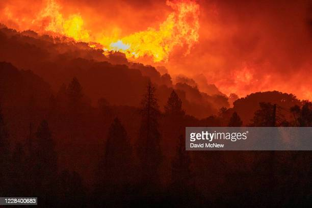 Flames incinerate a forest as the Creek Fire rapidly expands on September 8, 2020 near Shaver Lake, California. California Gov. Gavin Newsom declared...