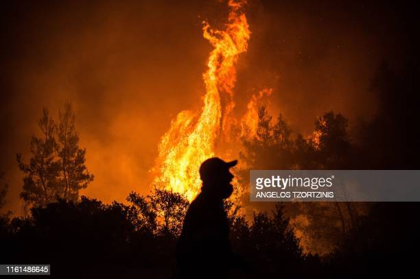 Flames rise from a forest fire near the village of Makrimalli on the island of Evia, northeast of Athens, on August 13, 2019. - Hundreds of villagers...