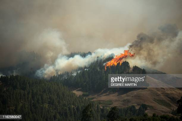 TOPSHOT Flames rise from a forest fire raging in Montana Alta on the island of Gran Canaria on August 18 2019 Authorities on the Spanish island of...