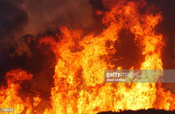 Flames rise from the 1500acre Troy fire burning out of control east of Laguna Mountain June 19 2002 northeast of Pine Valley California Three...