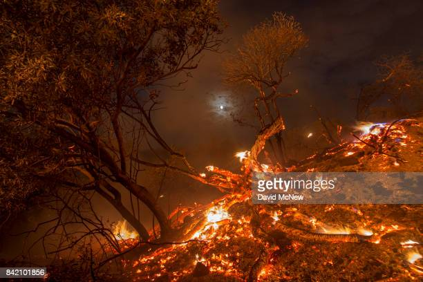 Flames spread on a moonlit night at the La Tuna Fire on September 2 2017 near Burbank California Los Angeles Mayor Eric Garcetti said at a news...