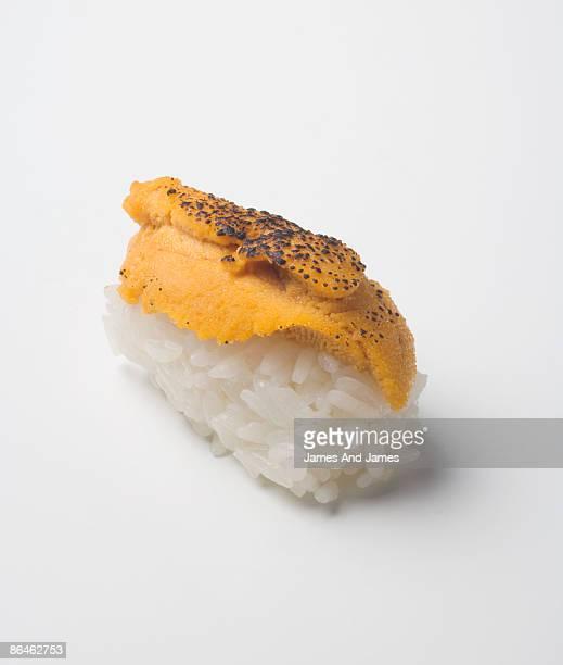 Flame-torched uni nigiri sushi