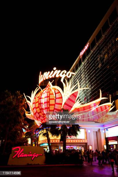 flamingo hotel and casino at night in las vegas, nevada, united states - flamingo las vegas stock pictures, royalty-free photos & images