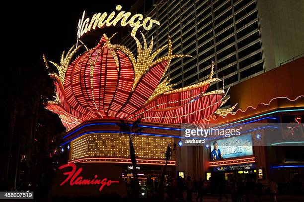 flamingo hotel and casino - flamingo las vegas stock pictures, royalty-free photos & images