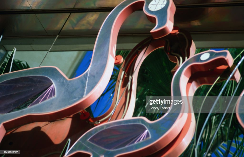 Flamingo's in Las Vegas. : Stock Photo