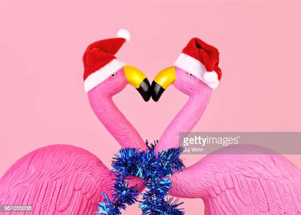 flamingos in santa hats - tinsel stock pictures, royalty-free photos & images