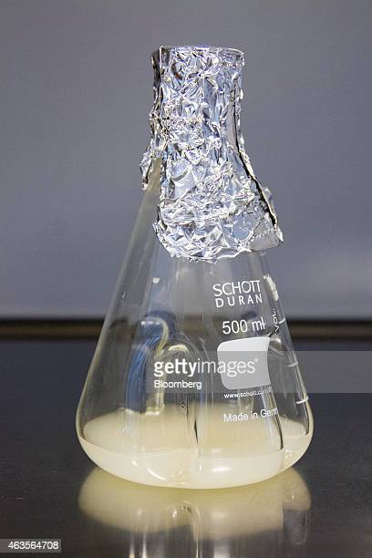 A flask containing a yeast fermentation broth sits in a fermentation laboratory at Evolva Holding SA in Copenhagen Denmark on Tuesday Feb 10 2015...