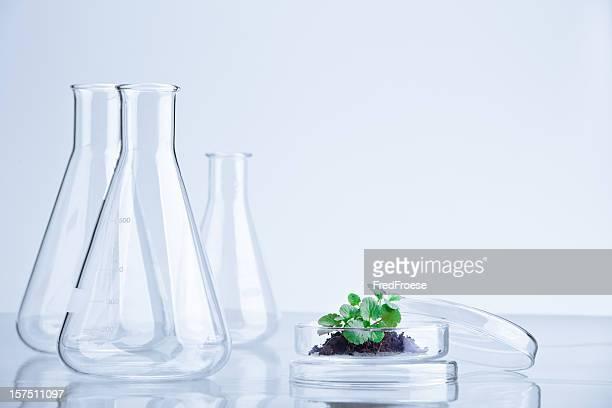 matraces - frasco cónico fotografías e imágenes de stock