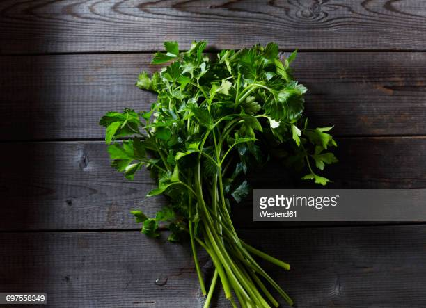 flat leaf parsley on dark wood - flat leaf parsley stock photos and pictures