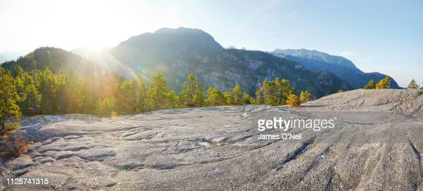 flat rocky plateau with forests and distant mountains basked in sunlight - altopiano foto e immagini stock