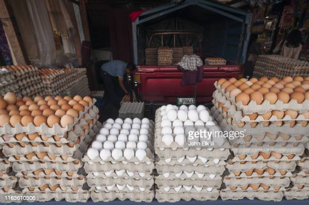 flats of eggs for sale - colonial stock pictures, royalty-free photos & images