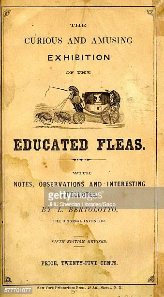Flea Circus pamphlet L Bertolotto with engraving of a flea driving a carriage 1900