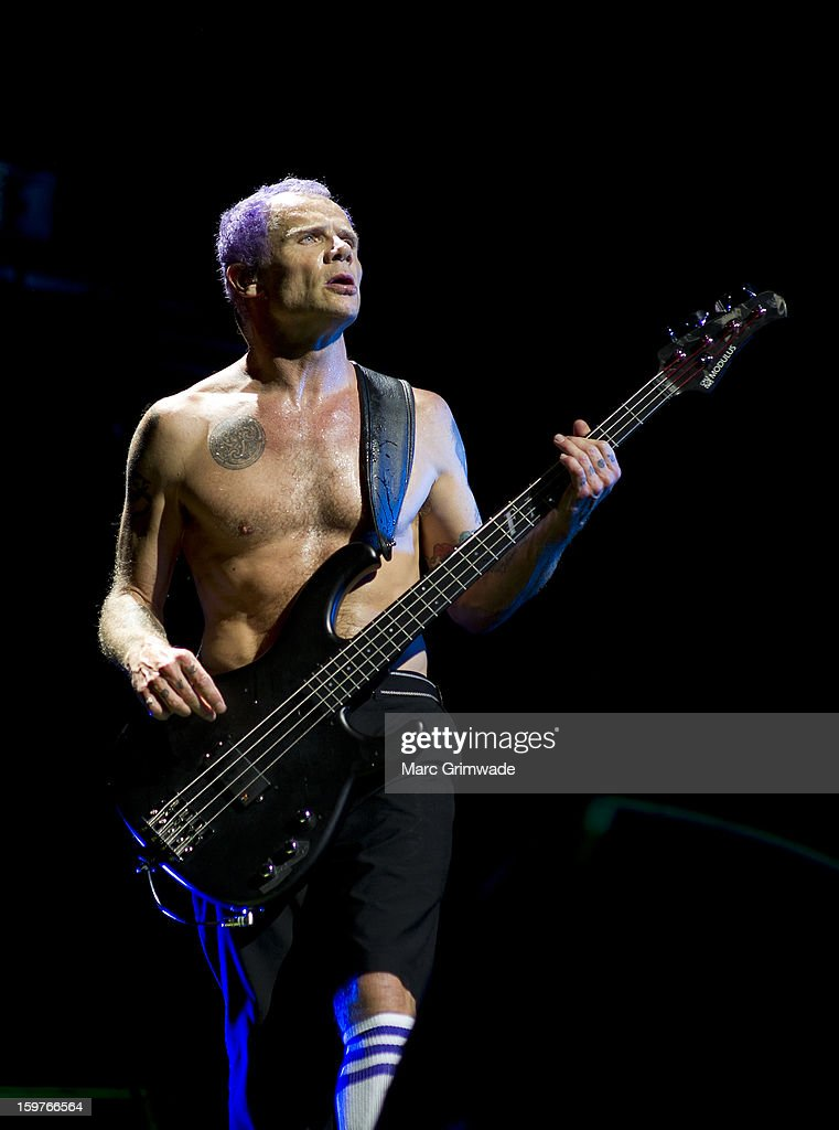 Flea from the Red Hot Chili Peppers performs live on stage at Big Day Out 2013 on January 20, 2013 in Gold Coast, Australia.
