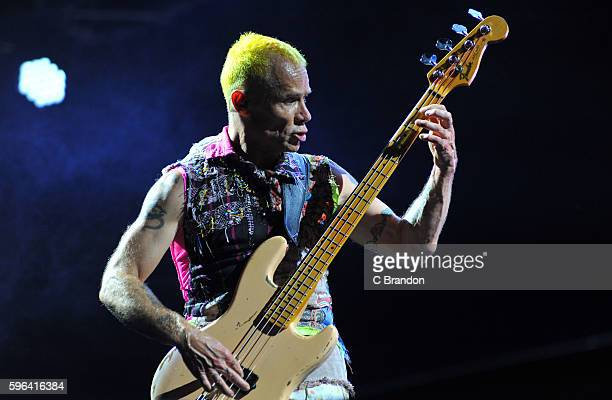 Flea of Red Hot Chili Peppers headlines on the Main Stage during Day 2 of the Reading Festival at Richfield Avenue on August 27, 2016 in Reading,...