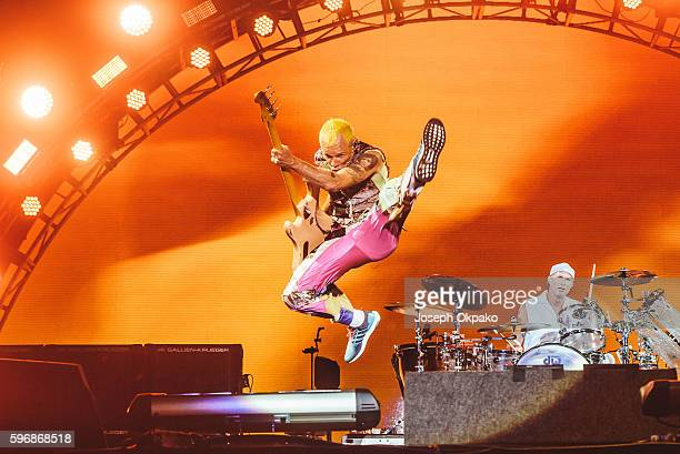 Flea of Red Hot Chili Peppers performs on stage on Day 2 at Reading Festival 2016 on August 27 2016 in Reading England