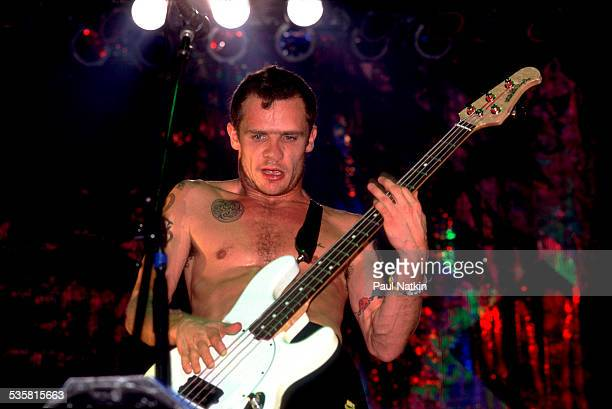 Flea of the band Red Hot Chili Peppers performing at the Aragon Ballroom Chicago Illinois December 6 1991