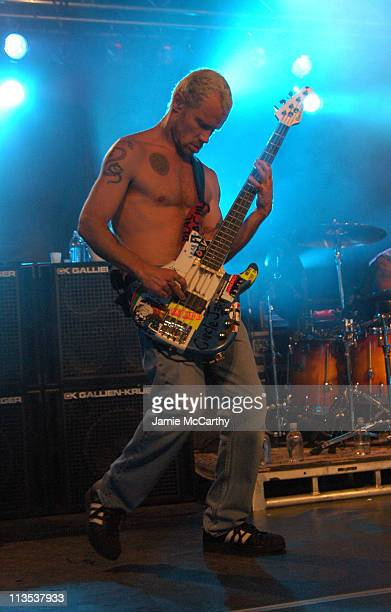 Flea of The Red Hot Chili Peppers during The Creative Coalition Benefit Gala for the First Amendment featuring The Red Hot Chili Peppers sponsored by...