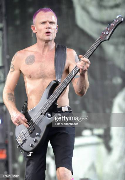 Flea of the Red Hot Chili Peppers performs as part of the 2013 Orion Music More Festival on Bell Isle on June 8 2013 in Detroit Michigan