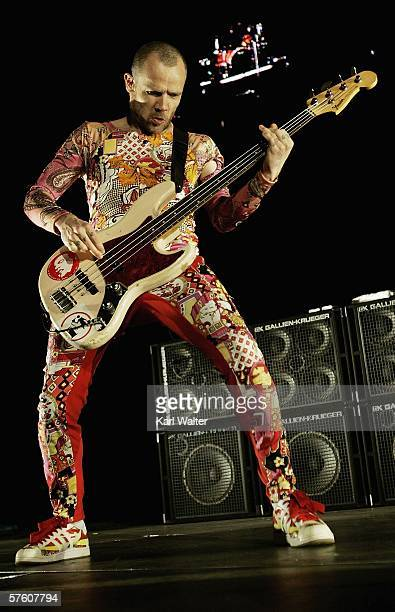 Flea of the Red Hot Chili Peppers performs at the 2006 KROQ Weenie Roast Y Fiesta at the Verizon Wireless Ampitheater on May 13 2006 in Irvine...