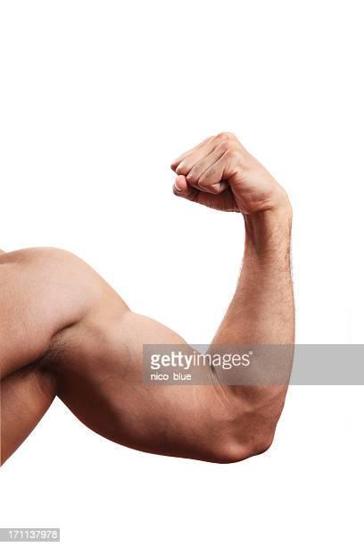 flexing - muskel stock-fotos und bilder
