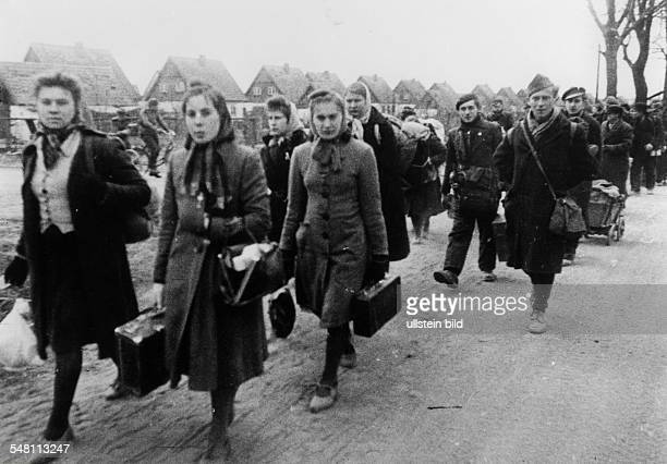 WW II Flight from the eastern German territorries Civilians on a road near Koenigsberg refugees and probably also freed prisoners of war on their way...