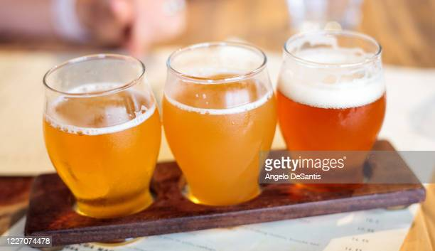 flight of beer - help:ipa stock pictures, royalty-free photos & images