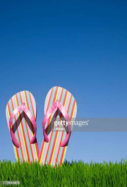 Flip Flops (XXL) Vertical