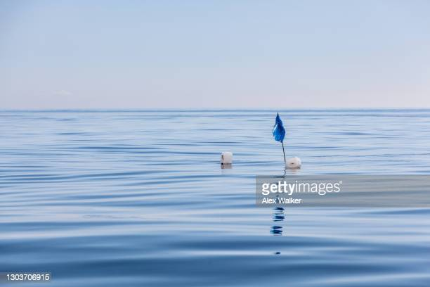floating blue flag in empty ocean - falmouth england stock pictures, royalty-free photos & images