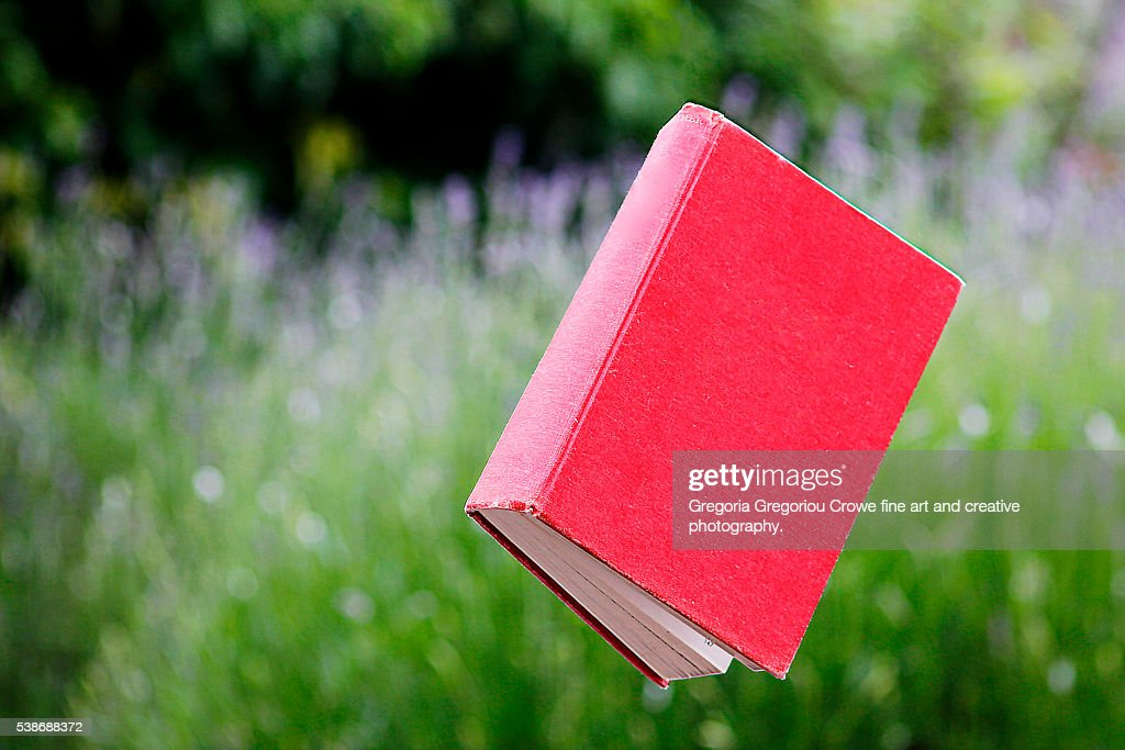 Floating Book : Stock Photo