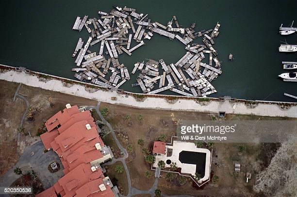 Floating Debris from Hurricane Hugo