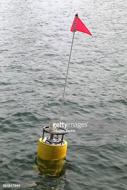 Floating Environment and Weather research beacon with wireless technology