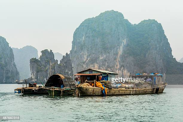 floating fishing village at ha long bay - merten snijders stock-fotos und bilder
