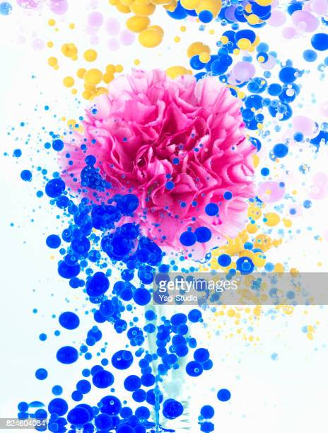 Floating flower and color oil