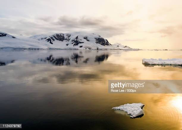 a floating ice in the sunset - antarctic peninsula stock pictures, royalty-free photos & images
