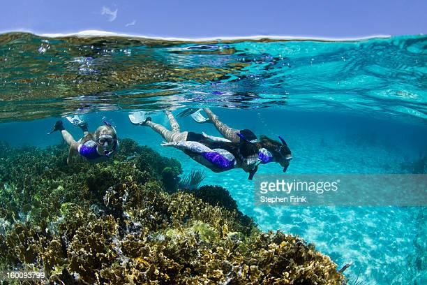 floating in crystalline waters - ナッソー ストックフォトと画像