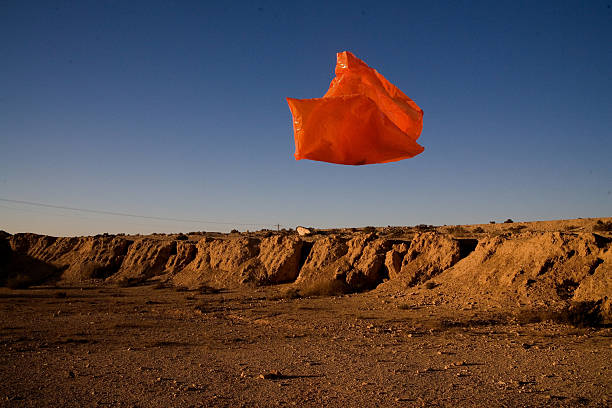 floating plastic bag