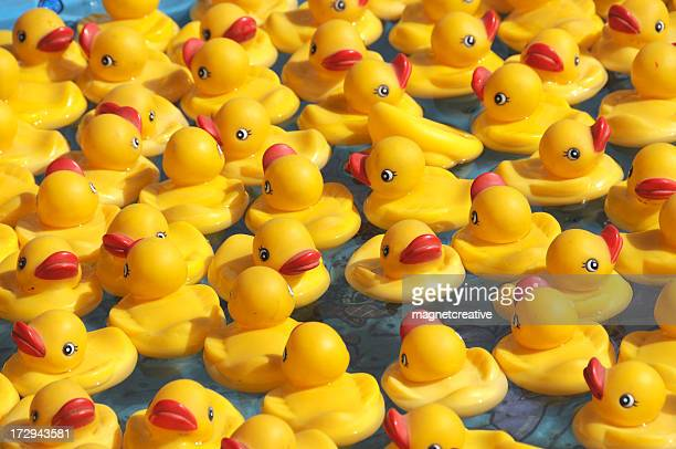 Floating Rubber Duckies
