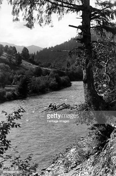 Floating tree trunks down the river Bistrita Valley Moldavia northeast Romania c1920c1945 Depicting customs and traditional labour in the rural...
