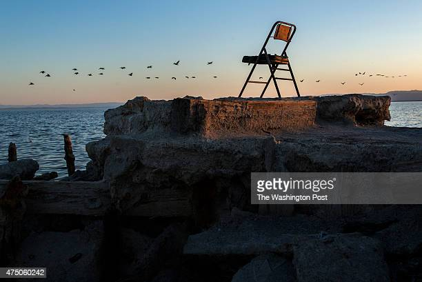 A flock of birds flies above the Salton Sea beyond the decaying shoreline of Bombay Beach CA on April 16 2015 Scientists and environmentalists are...