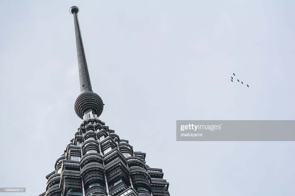 Flock of birds fly over Petronas Twin Towers : Stock Photo