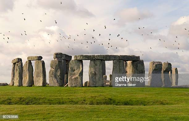 flock of birds flying above stonehenge - stonehenge stock photos and pictures