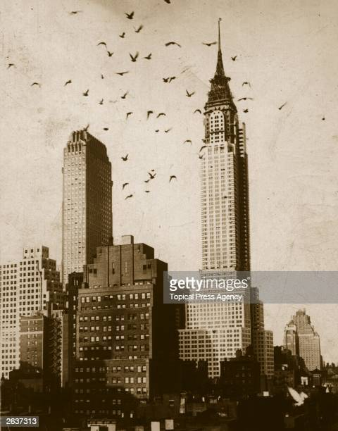 A flock of birds flying in front of the nearlycompleted Chrysler Building in New York City Designed by William Van Alen